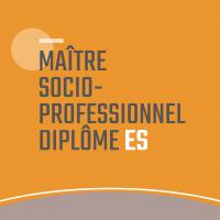 Maître socio- professionnel ES