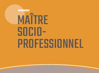 Maître·esse socioprofessionnel·le ES